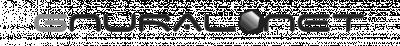 Gnural Net logo